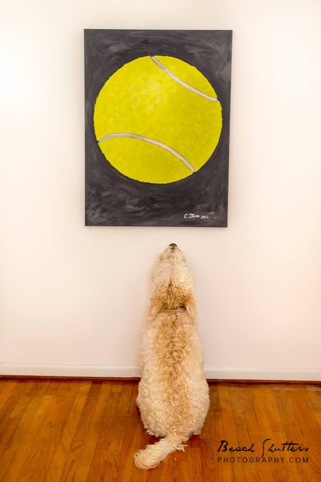 Pet-friendly art and photographer