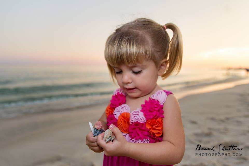 All ages love to find seashells
