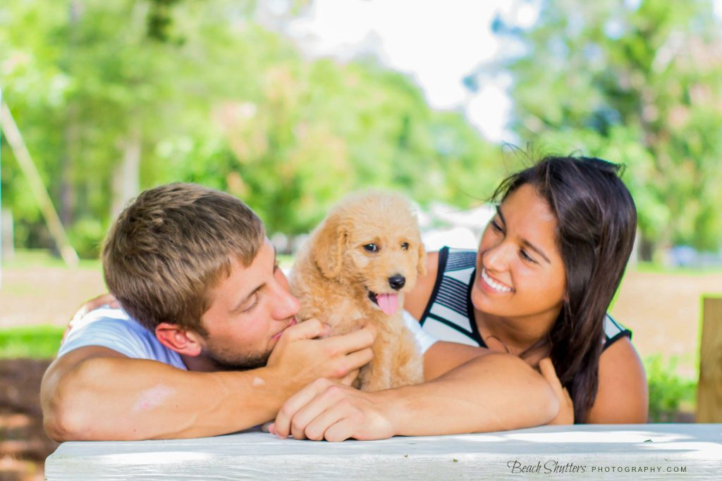 Take the Dog to the park in Orange Beach